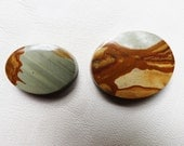 Oregon Picture Jasper Owyhee Cabochon Stone Rare and Beautiful Jewelry Making Supplies
