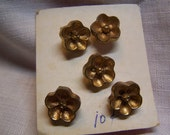"""RESERVE FOR LILLY Cute Vintage 1/2"""" Gold Tone Floral Buttons, Set of 5 (1683)"""