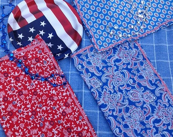 Perfect Patriotic Picnic Napkins Set of 6