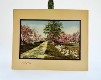 Vintage Tinted Photo | The Turf Path | Wallace Nutting | Hand Tinted Photo