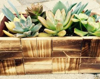 Succulent planter for Mother's Day , DIY Succulent Planter,  hostess gift,  garden decor