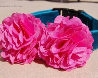 Modern peacock blue with hot pink flower dog collar.Pet Party collar.Beautiful hot pink flower collar for dog. handmade girl dog collar
