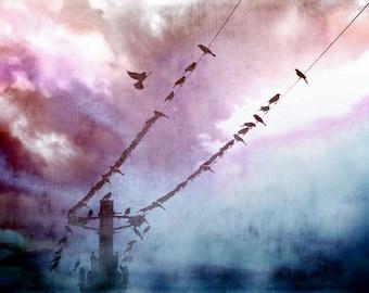 "Bird Photography, Cloud Photography, Art Photography, Surreal, Nursery Art, Sky Photography, Fine Art Photography, ""Fly With Me"""