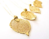 Gold Leaf Necklace, 22k Gold Aspen Leaf, Delicate Gold Filled Chain, Real Leaf, Filigree Leaf, Delicate Necklace, Gold Jewelry, Dainty Gold