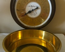Salter Wall Mounted Kitchen Scales