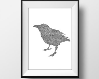 Line and Circle Drawn Crow Print - Ink - Art