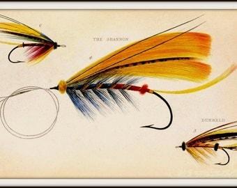 Art Print Salmon Flies Victorian - Print 8x10