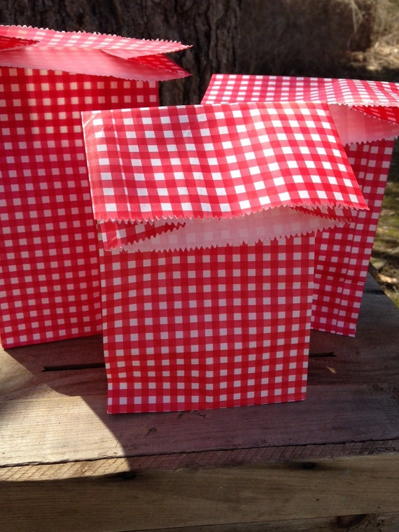 Gingham picnic lunch bags set of party supplies
