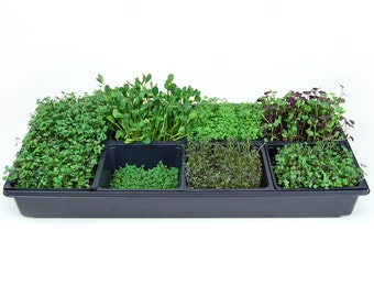 Sectional Hydroponic Microgreens Growing Kit - Grow Fresh Micro Greens for Indoor Gardening - Includes Seeds, Trays & Everything You Need