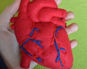Plush Anatomical Heart