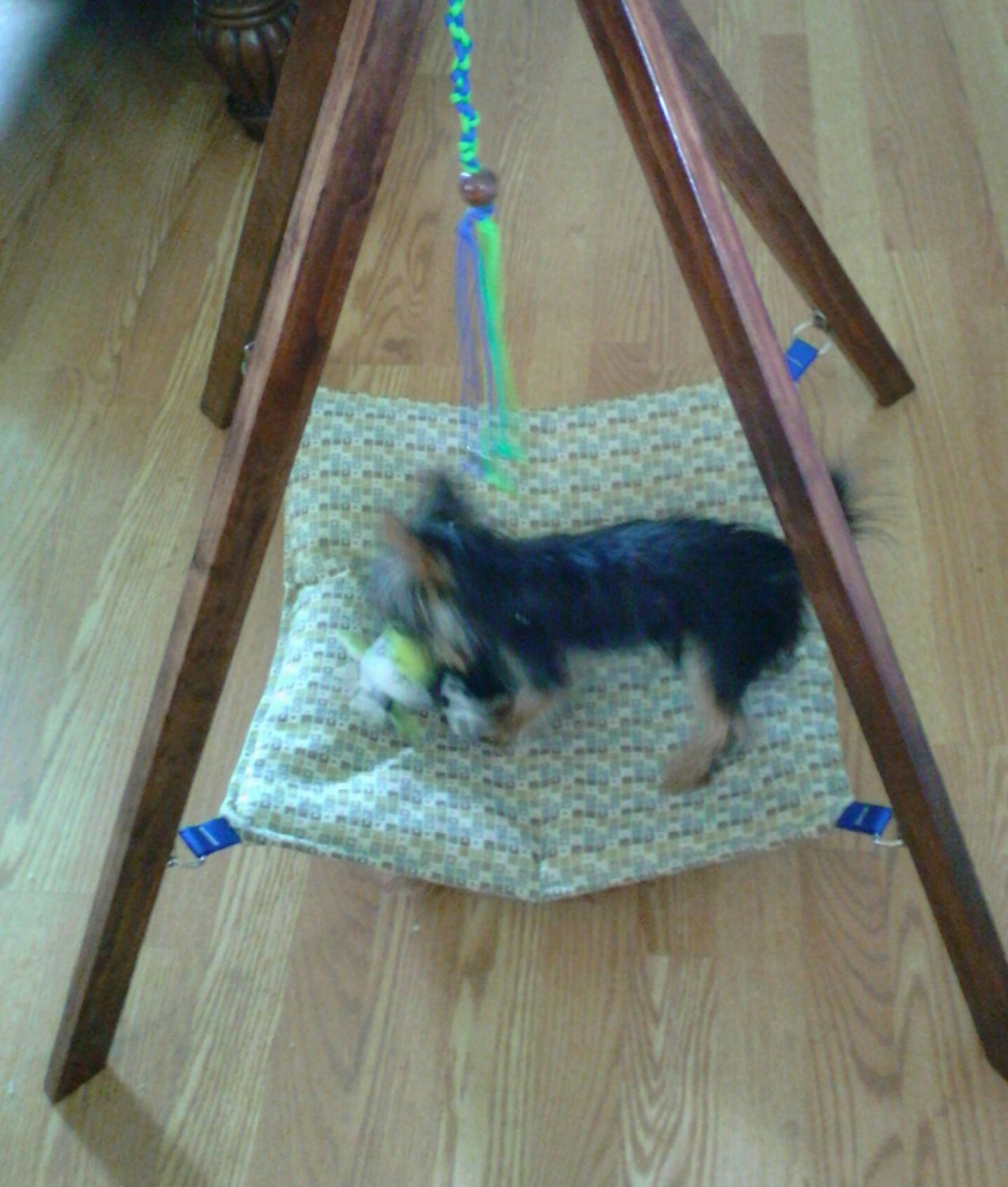 Hanging teepee pet hammock w toy cat bed small dog hammock - How to make a pet hammock ...