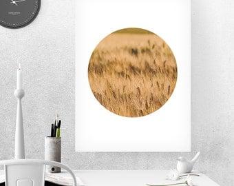 Golden Field, Golden Fields Photography, Wheat Field Photography, Printable Photography, Wheat Photography, Field Wall Art, Field Prints