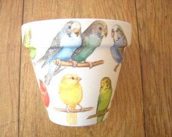 Hand Painted and Decoupaged Decorative Flower Pots Budgies and Canaries 1