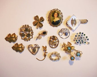 Vintage Jewelry Brooch and Clips Lot