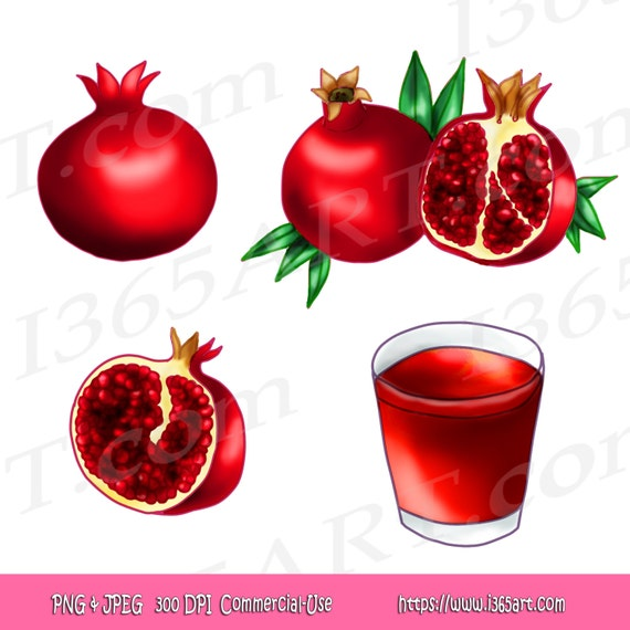 Pomegranate Fruits Clipart Set Hand Drawn Illustrations by ...