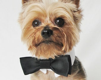 Dog Wedding Tuxedo, Pet Wedding Clothes, Dog Tuxedo Collar, Pet Wedding Attire, Wedding Dog Clothes, Chihuahua Clothes, Ferret Clothes