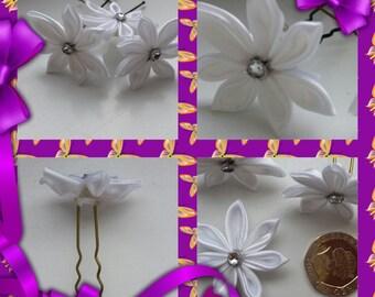 10  Brides hair  clips.