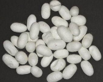 40 silk cocoons, (Bombyx mori), approximately 1 ounce (also called Mulberry silk)