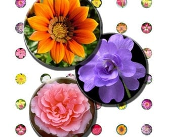 Flowers Blossoms Spring Summer Rose Daisy Lily Digital Images Collage Sheet 14 mm .5 Inch Circles 8.5x11 & 4x6 INSTANT Download TC