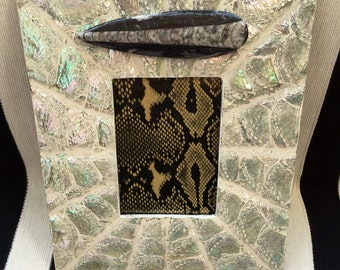 """Luminescent 5"""" X 7"""" Photo Frame made of Abalone Shells with Large Orthoceras Fossil."""