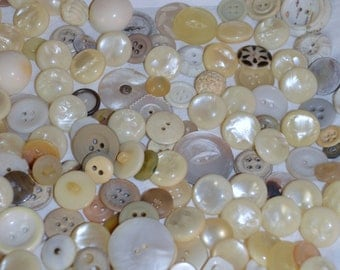 Vintage White and Ivory Buttons Lot of 200 colors and sizes Vary