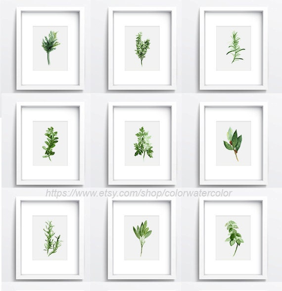 Set Of 9 Herbs And Spices Kitchen Decor Herb Chart