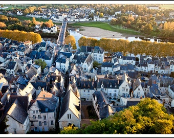 Rooftops of Chinon
