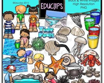 Tide Pools Clip Art Bundle