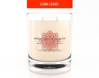 Scented Candle Citrus Cinnamon Cloves Soy Wax 420g Glass Jar Candle