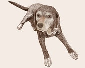 Custom PET Portrait, digital drawing, unique gift for birthday, pet lovers, children, family… ! Cat, dog, rabbit…