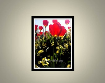 Christmas gift present home decor interior design wall art house warming new home birthday anniversary AmandSimone Poppies