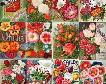 "Shop ""flower seeds"" in Art & Collectibles"