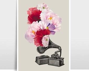 """A3 Artprint """"Flower gramophone"""""""
