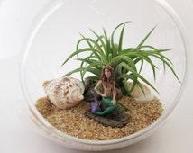 Miniature Little Disinterested Mermaid DIY Terrarium Kit