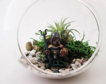 Miniature Wizard Dog/Octopus DIY Terrarium Kit