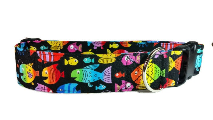 Bright color fish dog collar cat collar by greatdogdesigns for Fish dog collar