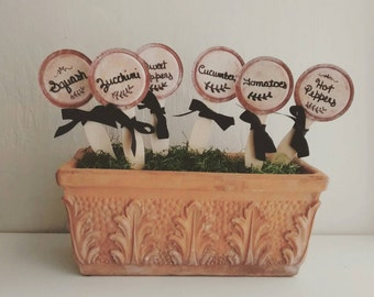 Handpainted and Hand Lettered Mason Jar Lid Garden Markers