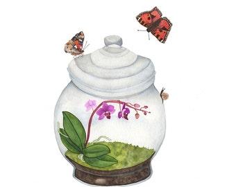 Watercolor Terrarium Print / Orchid Butterflies Snail Moss Contemporary Botanical Art Houseplant Flowers Nursery Nature Decor / 4x6 5x7 8x10