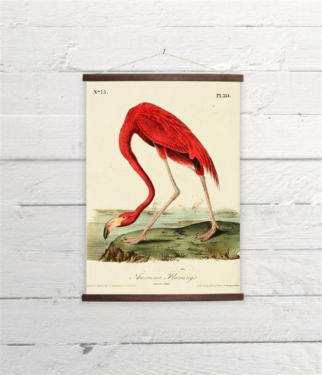 Vintage Flamingo Canvas Poster Print Wooden Wall Chart Size