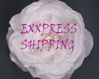 Express shipping 3-6 business days
