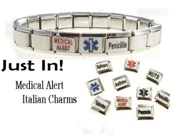 Medical Alert Italian Charm Bracelet Penicillin Epilepsy Diabetes Asthma Nuts Peanuts