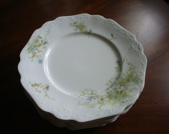 Johnson Brothers JB 291 Semi Porcelain Luncheon Plates (12)!