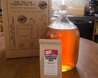 1 Gallon Kombucha Starter Kit - Black Tea