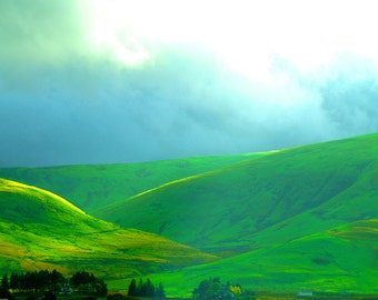 Green Hills Fine Art Photography Wall Photo Print, Wales Countryside Landscape Yellow Grass Rolling Mountains Great Britain Europe UK Scenic