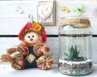 Handmade glass terrarium with succulents / Macrame
