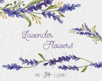 Watercolor set with Lavender Flowers. Hand painted Watercolor Flowers set. Floral elements. Digital Clipart