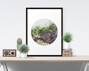 Modern Minimalist Bohemian Sacred Geometric Garden Ivy Fine Art Print