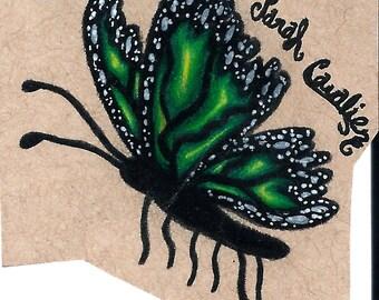 Original Green Butterfly Drawing