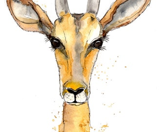 Original watercolour ANTELOPE drawn and painted by Lisa Wild