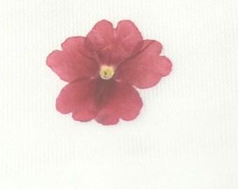 Dried Pressed Flowers Red Verbenas #102